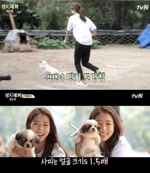 Park-Shin-Hye-4